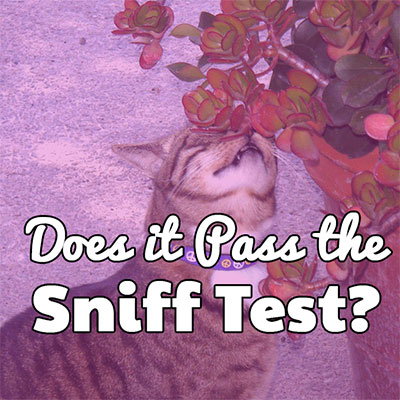 Does it Pass the Sniff Test?