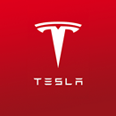 Tesla's Stock Price is More than What You Deserve